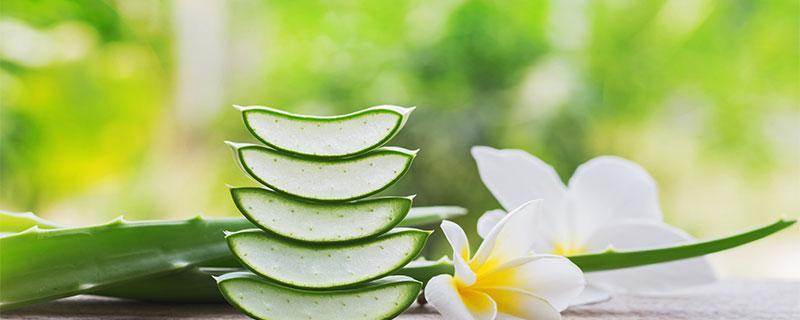 4 beneficii ale sucului de Aloe Vera